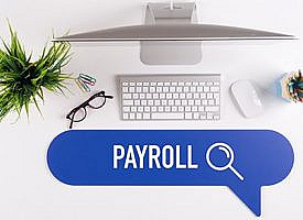 Work with your payroll provider to pay deferred taxes